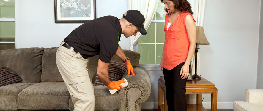 Southport, NC carpet upholstery cleaning
