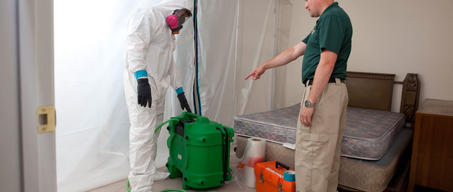 Southport, NC mold removal process